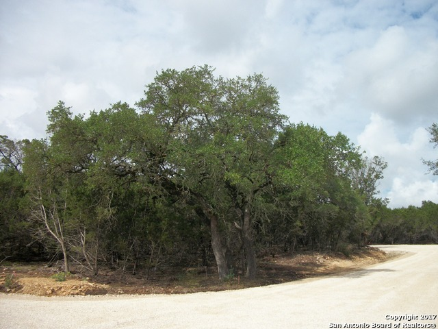 LOT 10, 11, 12 Saddle Horn Bandera, TX