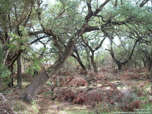 LOT 1-2 Saddle Horn Bandera, TX