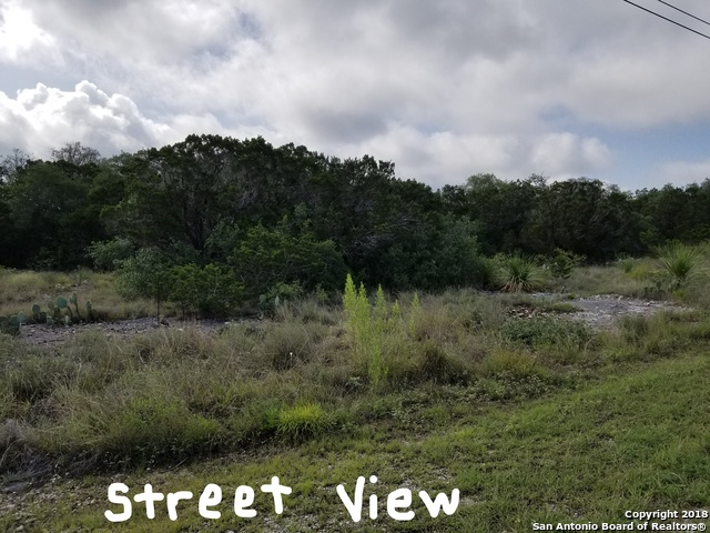LOT 356 County Road 2761 Mico, TX