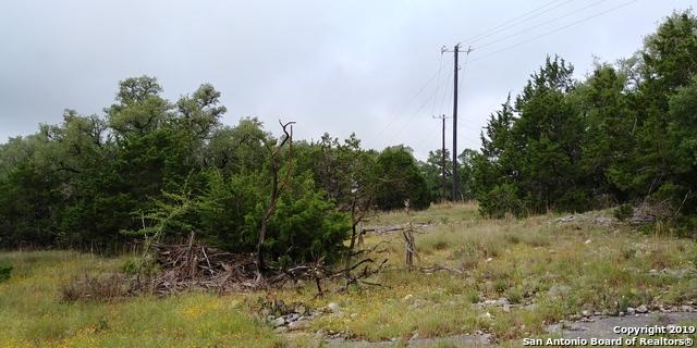 117 Asa Harold Blanco, TX